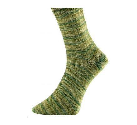 Pro Lana Pro Socks SCHWARZWALD 6-fädig 150 g